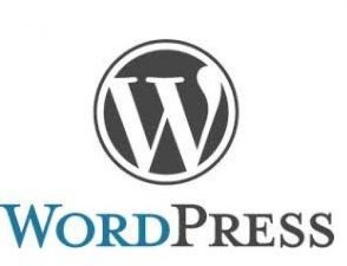 WordPress Basic Training