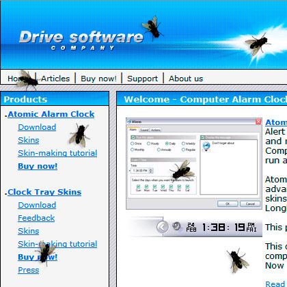 flies on computer screen