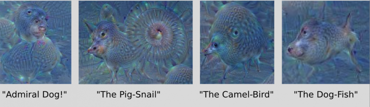 four examples of AI networks idetifying strange animals from a photo of a clear blue sky