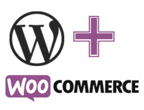 Woocommerce Basic Order Processing Video Tutorial